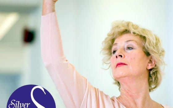 Silver Swans Adult Ballet Classes